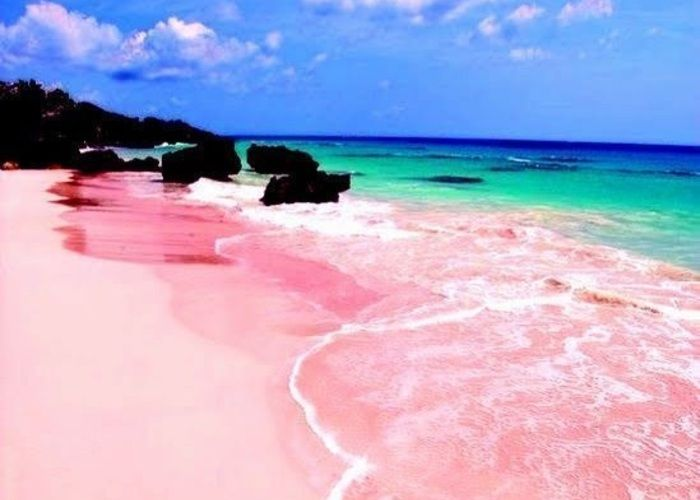 世界に一か所!ピンクの砂浜が可愛すぎるピンクサンド・ビーチ