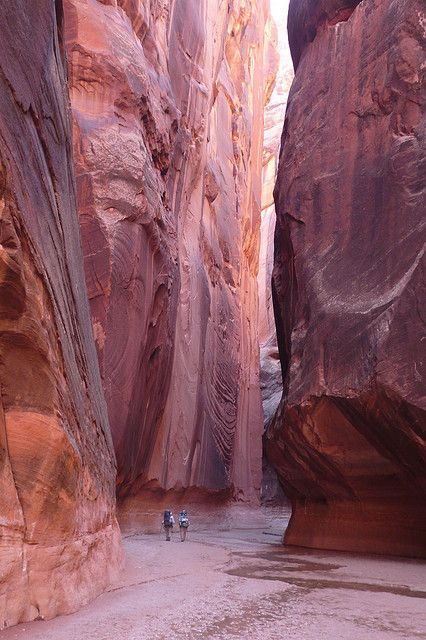 Hiking the Virgin River in Mt. Zion, Utah; cliffs rise up to 400 feet on both sides