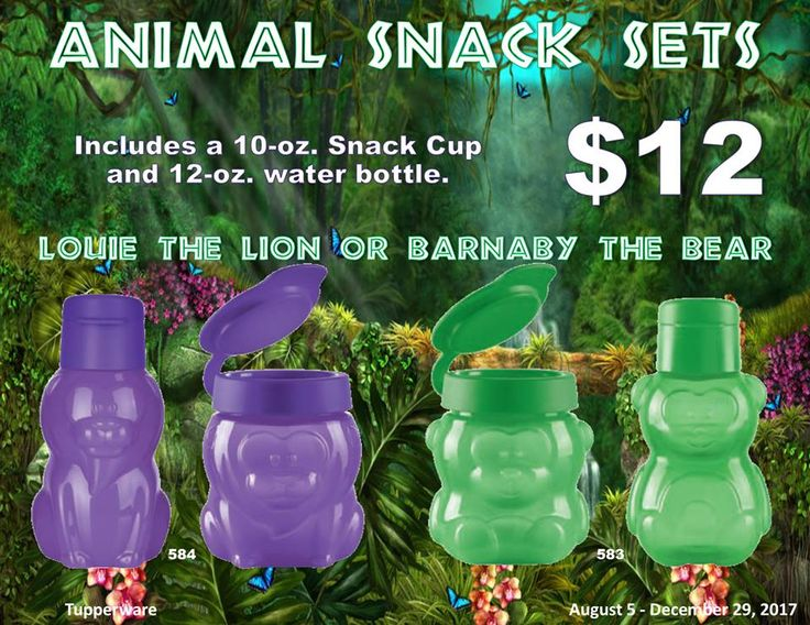 Tupperware Eco water bottles and snack cup snack for the lunch box.