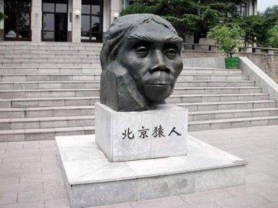 Image result for Peking Man