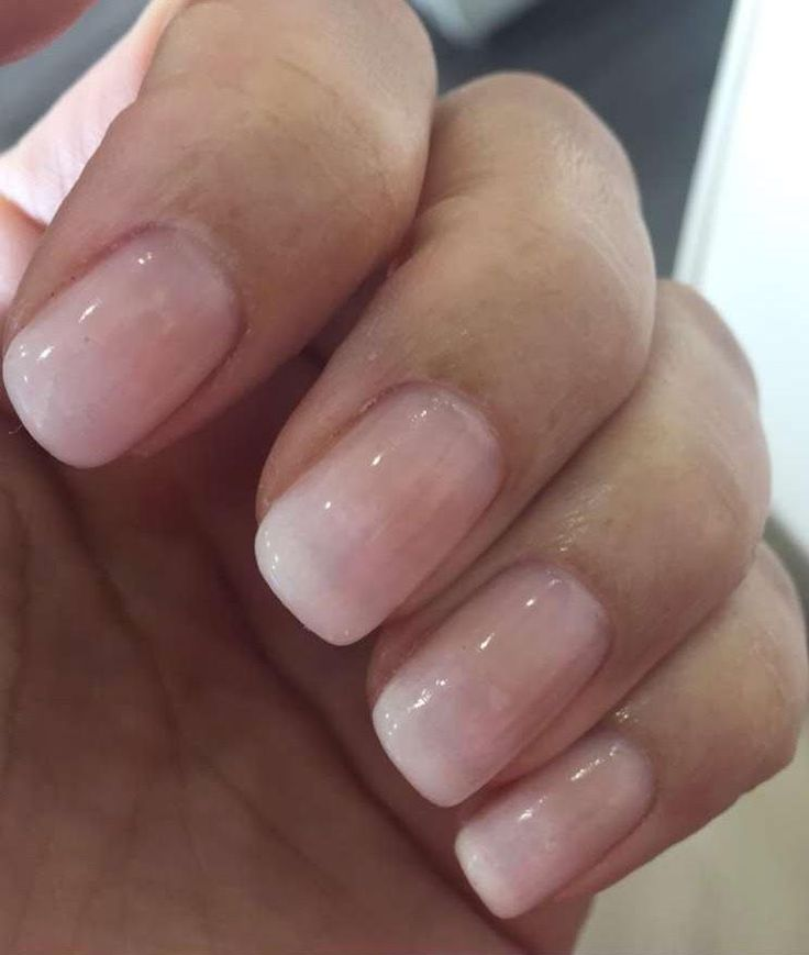 The 25+ Best Ombre French Nails Ideas On Pinterest