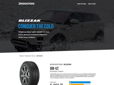 Bridgestone Tires Product View