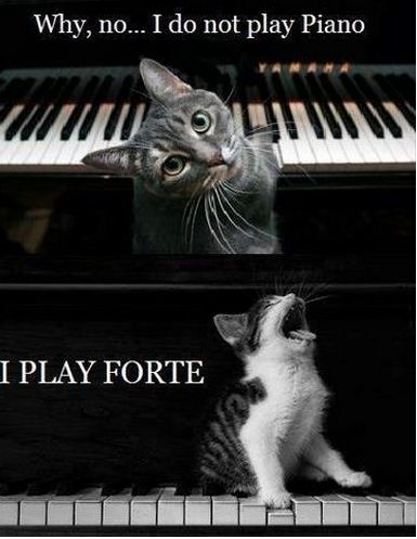 ♩♩♫♩Musical Musings with Mrs. Lukow ♫♩♫♩: Piano - Forte