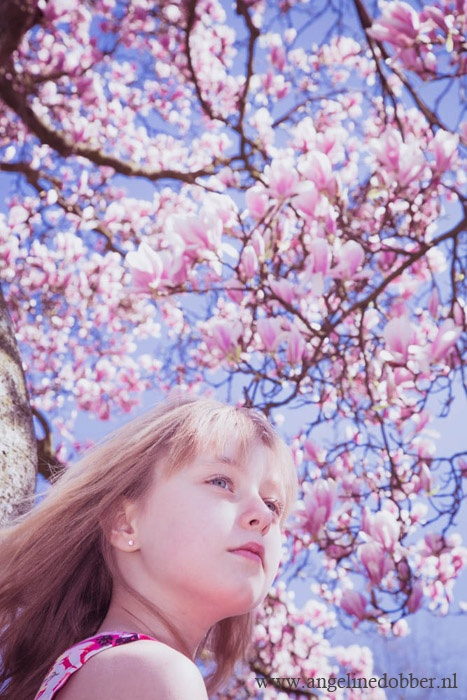 Angeline Dobber Fotografie - Magnolia