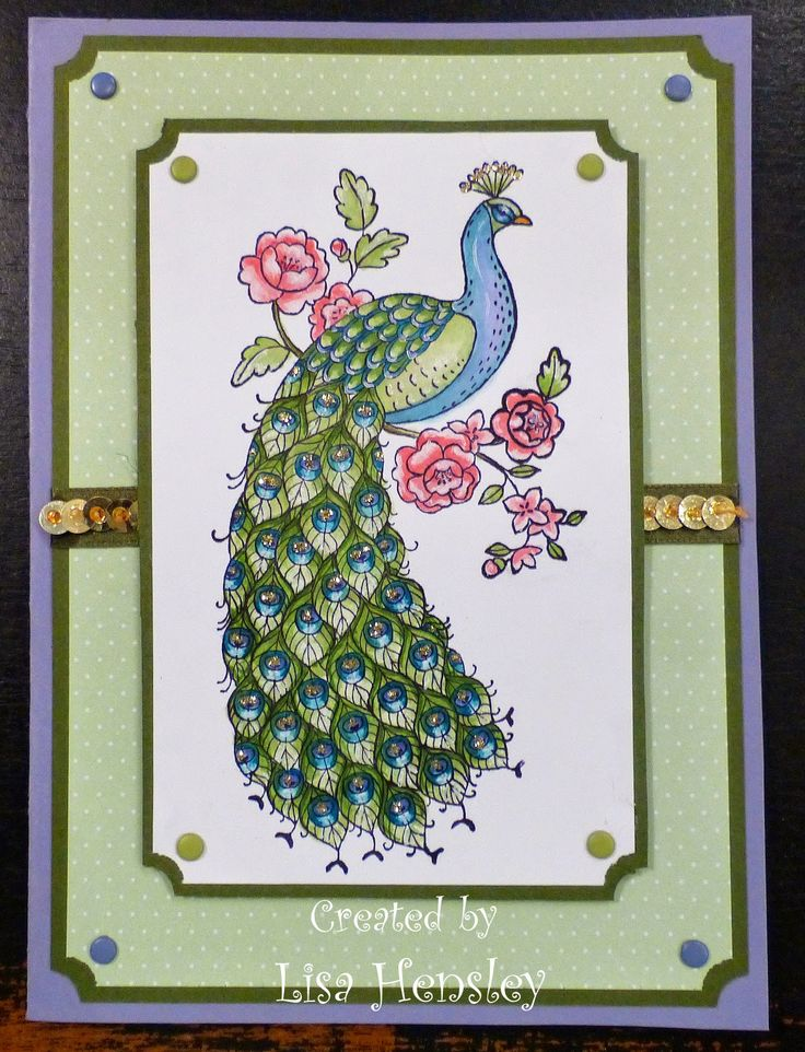 The Shabby Stamper: Perfect Peacock!  Stampin' Up!