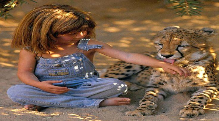 Biliyor muydun ? /// Çocukluğu Vahşi Hayvanlar ile Oyun Oynayarak Geçmiş Bir Kız: Tippi Degre