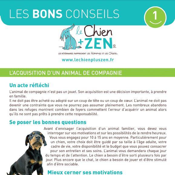 Les Bons Conseils du Chien + ZEN : l'acquisition d'un animal