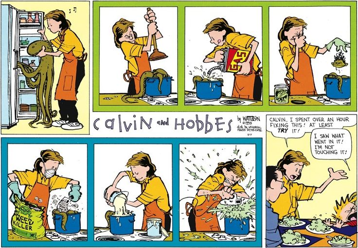 I saw what went in it! . . . ~Calvin and Hobbes by Bill Watterson