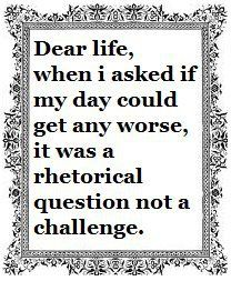 Dear life, when I asked if my day could get any worse, it was a rhetorical question and not a challenge.