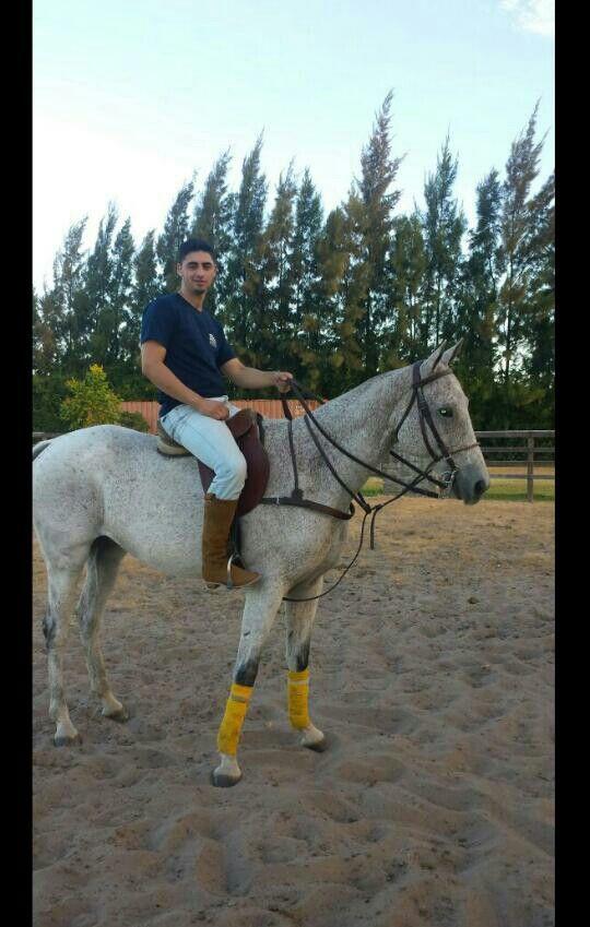 Equitacion.