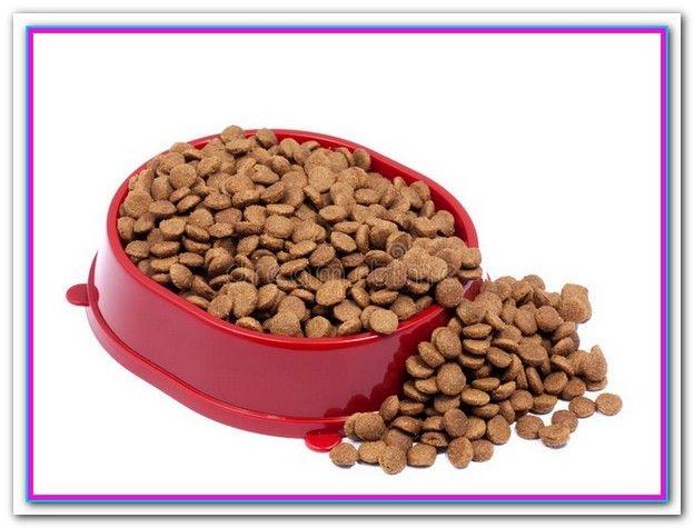 Best Dog Food For Shih Tzu With Sensitive Stomach Dog Food