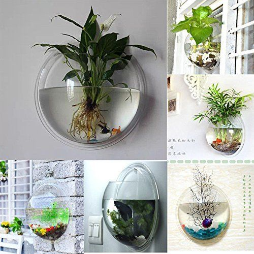 FreshGadgetz Indoor/ Outdoor Wall Mounted Plastic Plant Pot Rare Modern Planter: Amazon.ca: Home & Kitchen