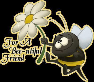 friends5
