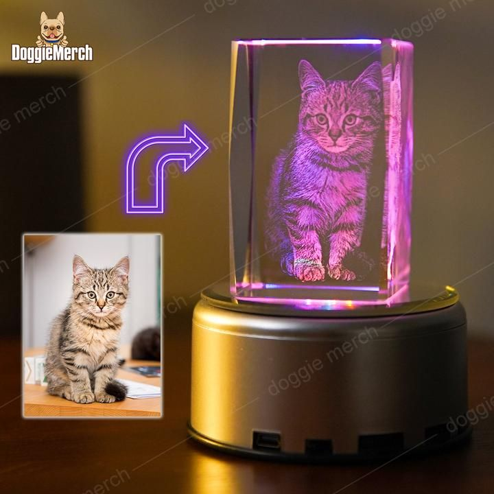 Custom 3d Photo Engraved Crystal Lamp Of Your Pet Photo Lamp Photo Engraving Crystals