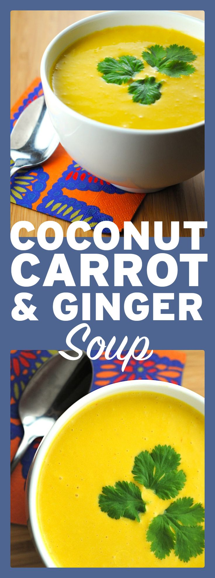 Easy coconut, carrot and ginger soup! This healthy soup is easy to make vegan (skip the fish sauce and use soy sauce). Full of flavour!  http://theblenderist.com/carrot-soup-ginger-coconut-milk/
