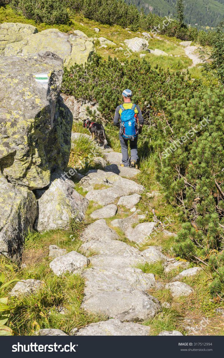 Palenica Bialczanska, Poland - August 30, 2015: Mountain rescuer with TOPR (Tatra Volunteer Search and Rescue, Tatrzanskie Ochotnicze Pogotowie Ratunkowe), along with a dog on the trail in the Tatras