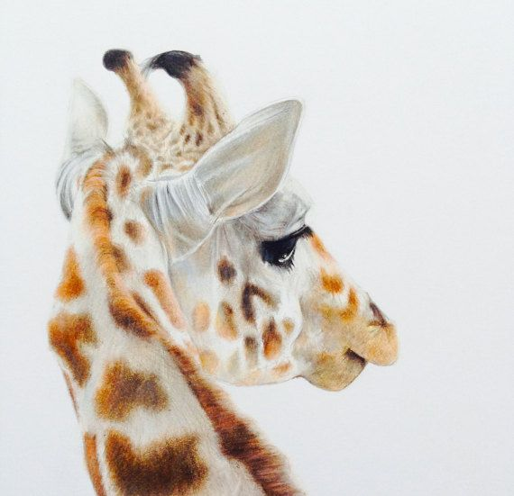 giraffe illustration  original drawing  animal by NayanaIliffe
