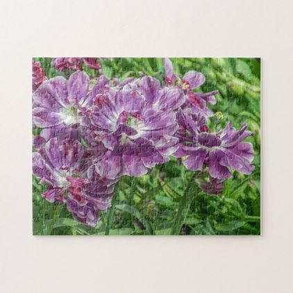 Best 25+ Light purple flowers ideas on Pinterest | Purple ...