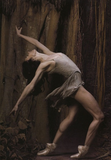 Alessandra Ferri photographed by Fabrizio Ferri: Ferris Photographers, Ballet Dancers, Allessandra Ferris, Ballerinas, Art, Beautiful, Alessandra Ferris, Amazing Dancers, Fabrizio Ferris
