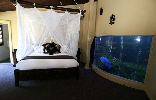 Bathtub Fish Tank | 10 Crazy And Outrageous Aquariums. (See bed and cloth wrap around).+