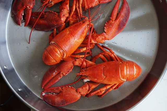 Lobsters cooked