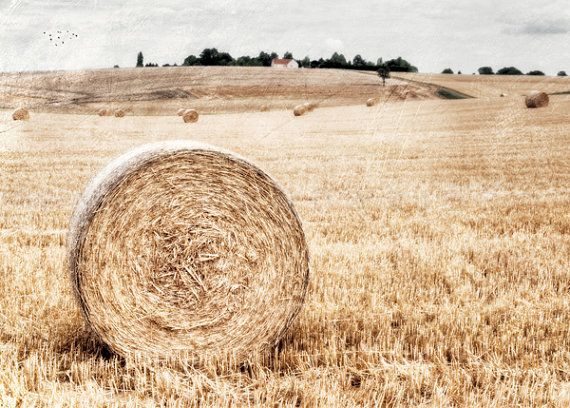 After the harvest - France - Original Signed Numbered Fine Art Photography Print 5x7 (13x18cm) by @Isobel Sippel