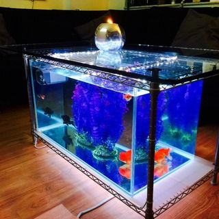 The 25 best Coffee table aquarium ideas on Pinterest How to