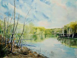 Lesne jeziorko by sezarka