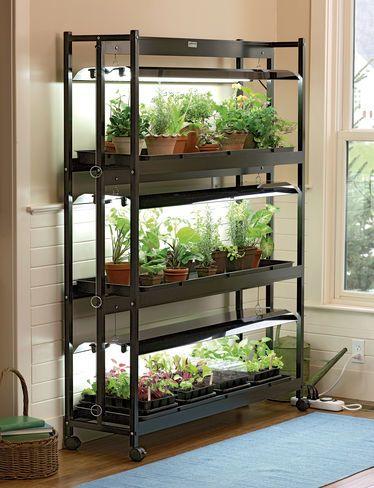 Standard 3-Tier SunLite® Garden, for indoor seed starting