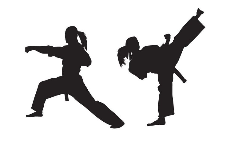 Karate Wall Decal - GIRL VERSION - Sticker , Kung Fu - Martial Arts. $55.00, via Etsy.