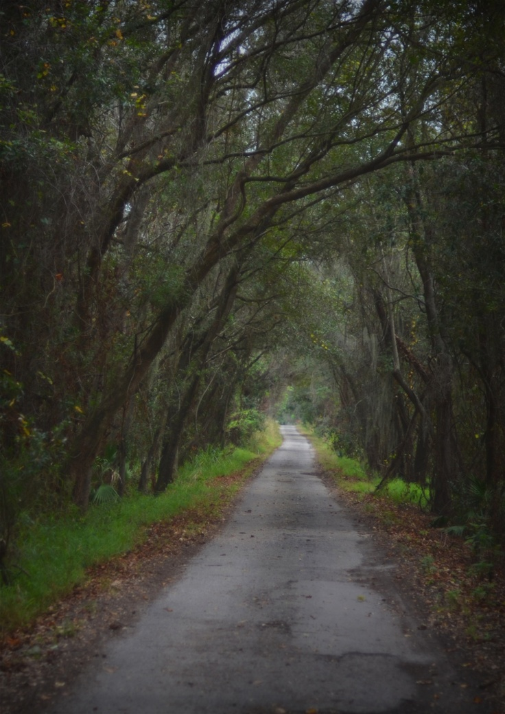 Just North Of The West Orange Trail Winter Garden Florida · Oakland  ParkWinter ...