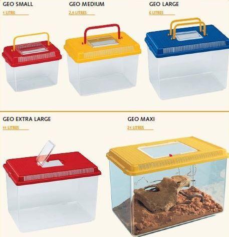 Ferplast Geo Пластиковый контейнер для грызунов, рептилий и рыб 60023099 - Переноски для грызунов - Ветеринарная Аптека №1 в Киеве | Зоомагазин корма для собак и кошек