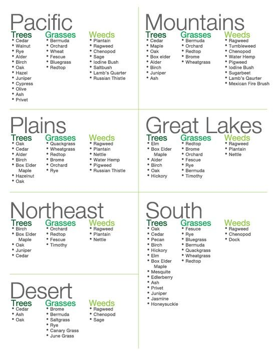 Top #Spring #Allergy #Triggers by Region (Guess I know why my allergies are making a fuss in AZ- thanks a lot, ragweed :( )
