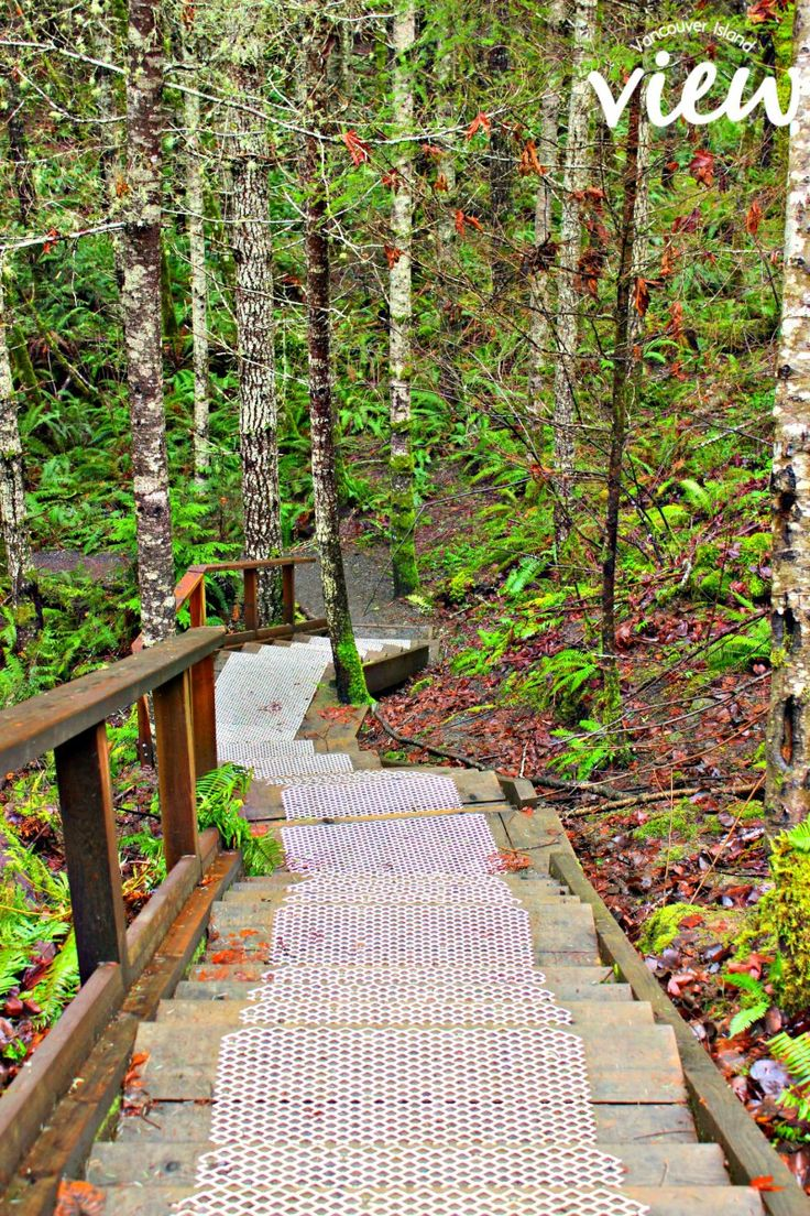 Are you travelling to Vancouver Island this summer? Here are the Top 10 walks in Nanaimo.
