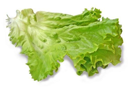 Заготовка салата листового