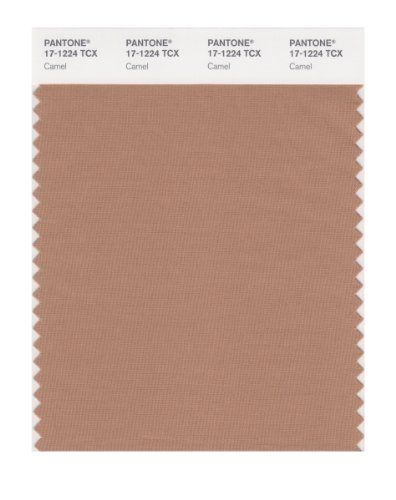 PANTONE SMART 17-1224X Color Swatch Card, Camel Pantone https://www.amazon.com/dp/B004O7E3A8/ref=cm_sw_r_pi_dp_x_W9LgybT7YZCC5