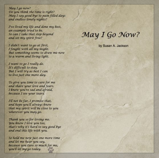 May I Go Now? | my beloved pets | Pet poems, Dog poems ...
