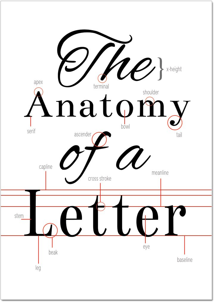 The Anatomy of a Letter (Printable)