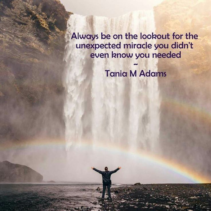 Always be on the lookout for the unexpected miracle you didn't even know you needed - Tania M Adams