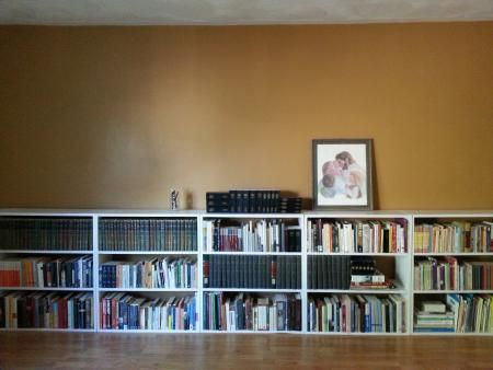 Home is Where the Shelves Are | Do It Yourself Home Projects from Ana White  Fantastic handmade bookshelves!