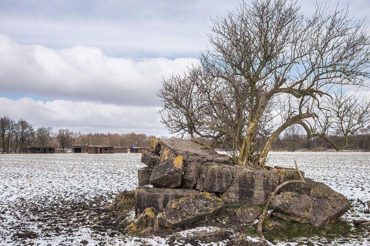 Trimunt - bunkers radarstelling 'Löwe'