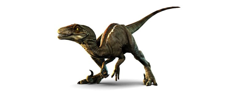 Raptors google and dinosaurs on pinterest - Raptor dinosaure ...