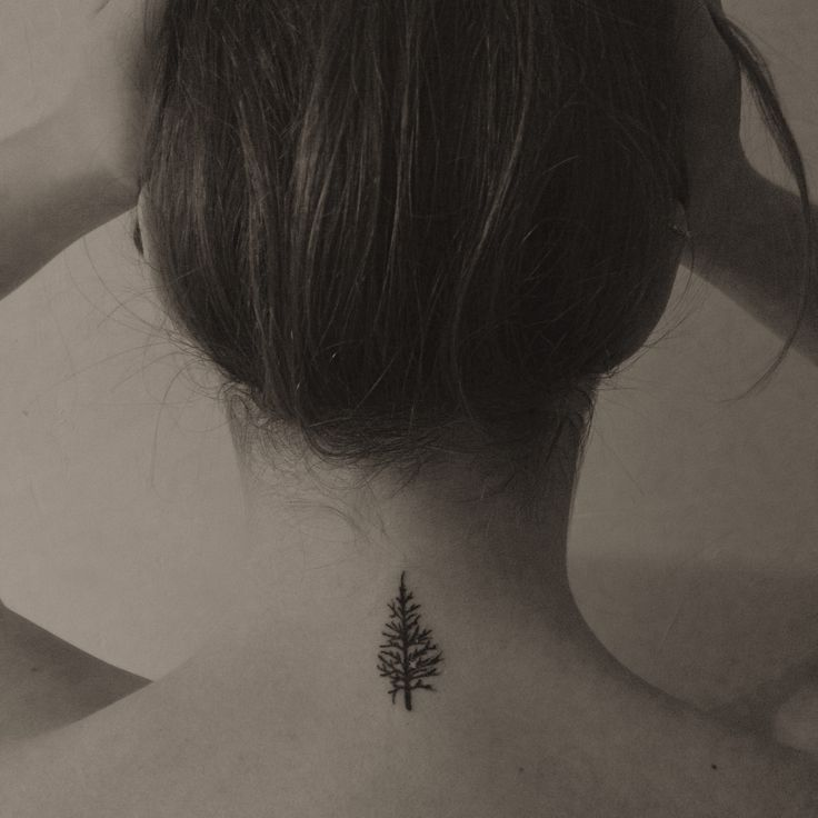 De 25 bedste id er inden for evergreen tattoo p for Evergreen tree tattoo