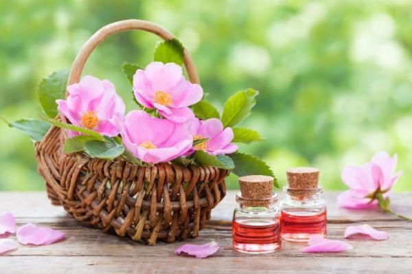 Como usar o óleo de rosa mosqueta no cabelo - umComo
