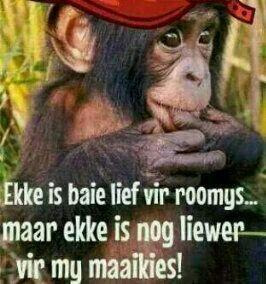 Ekke is baie lief vir.......