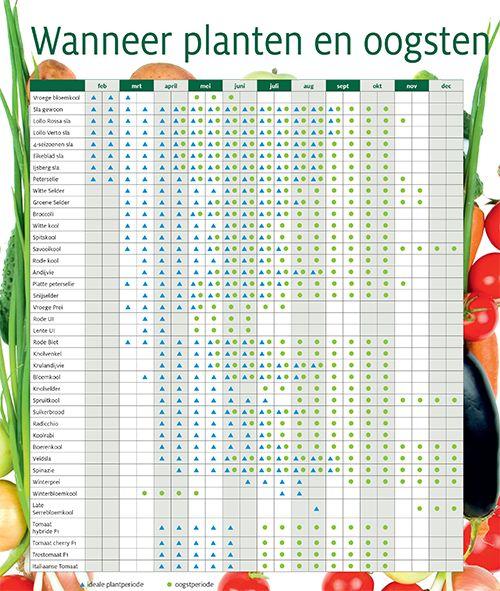 Plantkalender in volle grond