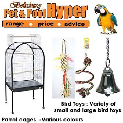 You might not have a dog or a cat, but you can also spoil your bird with our wonderful range of cages and assorted toys, hurry down today for our wonderful bird products. #birds #toys