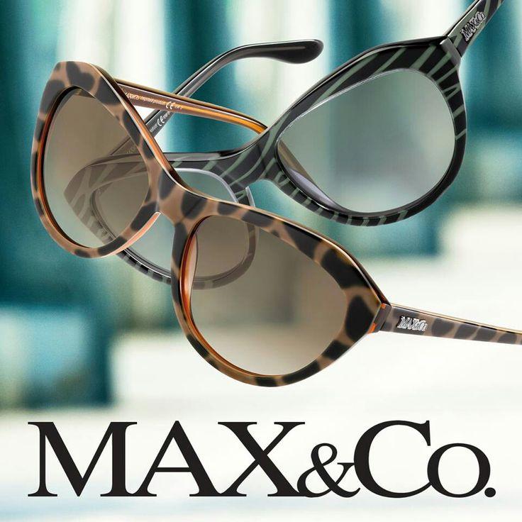 Sunglasses max&co.