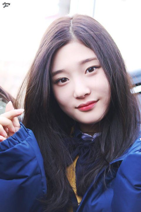 ioi chaeyeon - Google Search