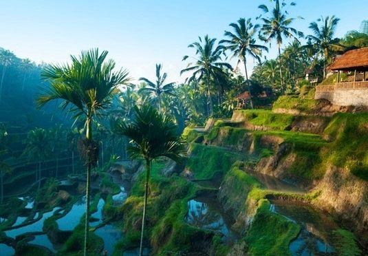 Bali-Urlaub im traditionell anmutenden Norden der Insel, inkl. Flügen und Transfers, Frühstück, täglicher Spa-Behandlung, 3-Gänge-Menü und Delfin-Ausflug